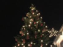 Licht&Lebkuchen Weihnachtsaktion mit gutem Ergebnis